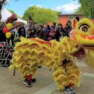 Lion Dance at Food Truck Grand Opening
